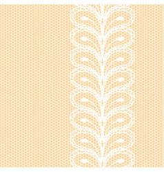 White lacy border on net background vector