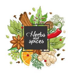 Winter square design with spices and herbs vector