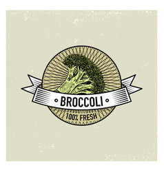 broccoli vintage set of labels emblems or logo vector image vector image