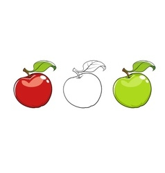 Ripe fresh apple with leaf vector image vector image