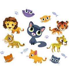 Collection of Wild Cats vector image