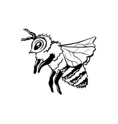 Black outline sketch honey bee vector