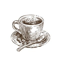 cup coffee sketch vintage vector image