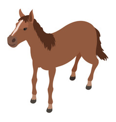 horse icon isometric style vector image