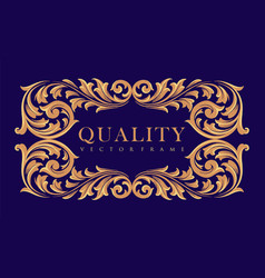 quality frame gold ornaments elegant label vector image