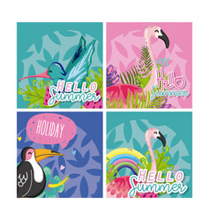 set of hello summer birds vector image