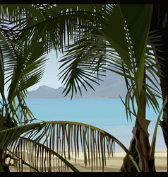 view of tropical coast palms from the bushes vector image