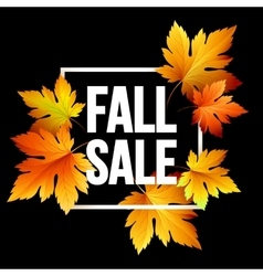 Autumn seasonal sale banner design Fal leaf vector image