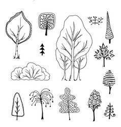 trees birch bushes tree doodle vector image vector image