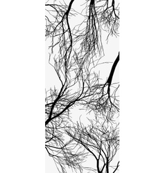 trees silhouette Tree isolated on white vector image vector image