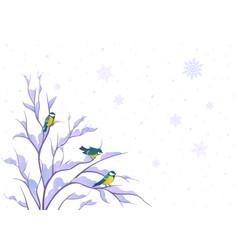Birds on bush vector