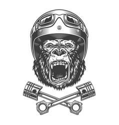 ferocious gorilla head in motorcycle helmet vector image