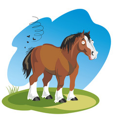 Funny cartoon horse vector
