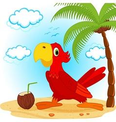 Parrot on beach vector