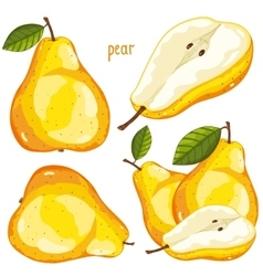Pear Isolated vector