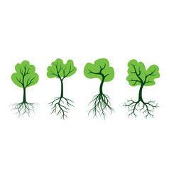 Shape tree with green leaves and roots vector