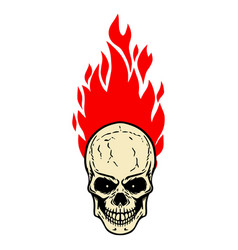 skull with fire on white background design vector image