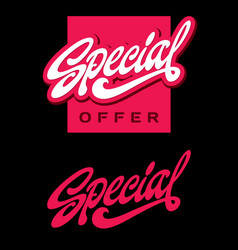 special offer lettering vector image