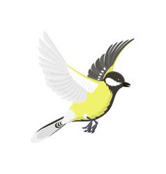 Titmouse bird isolated on white nature wild vector