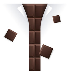 chocolate package blank for advertizing vector image