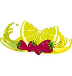 Juice splash vector image vector image