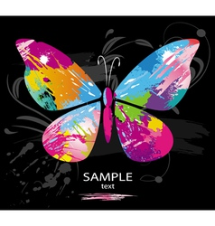 butterfly splashes vector image