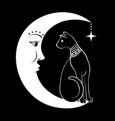 cat on moon can use vector image