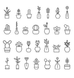 Collection home flowers vector