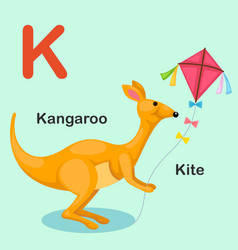 Isolated animal alphabet letter k-kite kangaroo vector