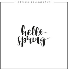 Hello spring Time of year Calligraphy phrase in vector image