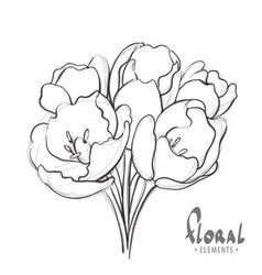 Unusual bouquet on a white background vector