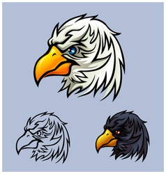 Bald Eagle Head vector image
