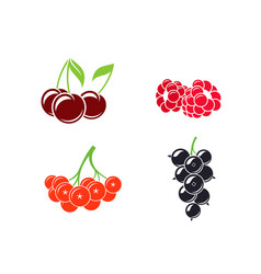 Berries abstract fruit on white background vector