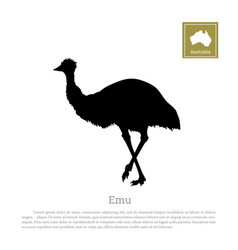 Black silhouette of ostrich emu vector