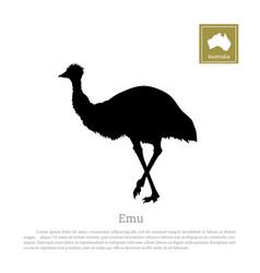 black silhouette ostrich emu vector image