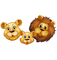 Family of lion with happy face vector