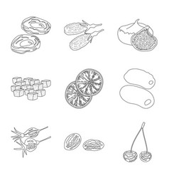 food and raw icon set of vector image
