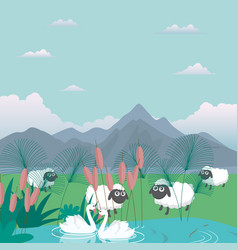 lambs sheep in nature feed grass farm cartoon vector image