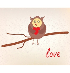 Owl love valentine card vector image