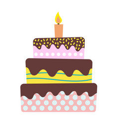 sweet birthday cake with burning candle vector image