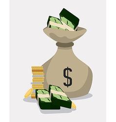money bag design vector image