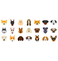 set heads dogs collection different breeds of vector image