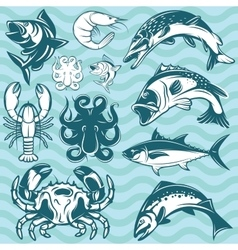 set of freshwater and marine fish and shellfish vector image