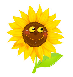 Sunflower character isolated vector