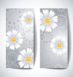 Two banners with daisy flowers on white background vector image