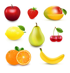Collection fresh fruit and berry vector