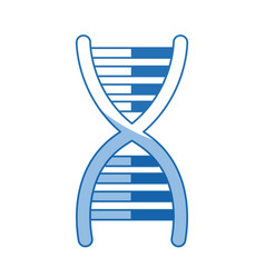 Dna molecule chromosome biology genetic shadow vector