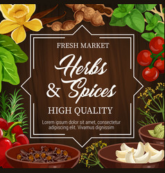 Food seasoning herbs and spices condiments vector