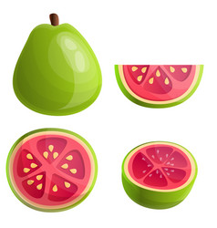 Guava icons set cartoon style vector