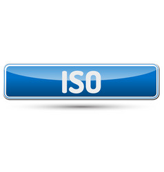 iso - abstract beautiful button with text vector image